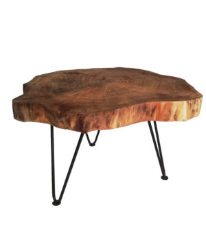 Real wood slice coffee table MARGOT