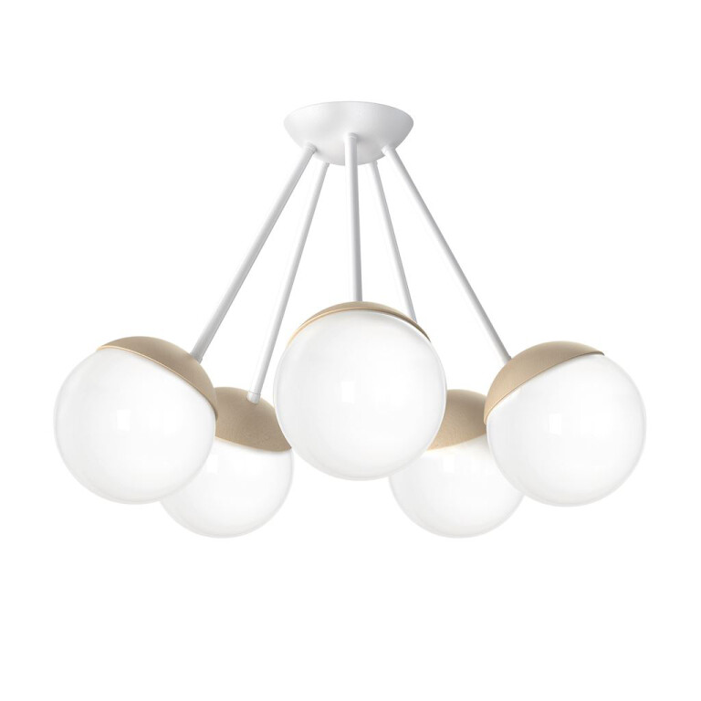 low ceiling pendant 5 lights SPACE with glass shades